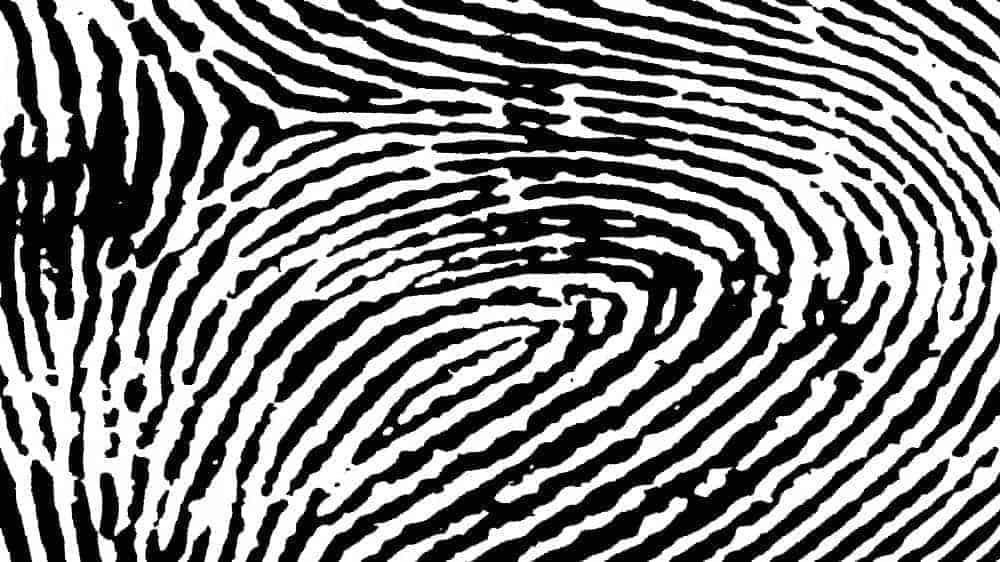 Black and white fingerprint pattern